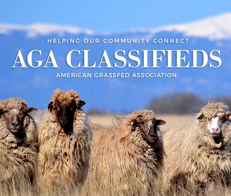 aga-classifieds