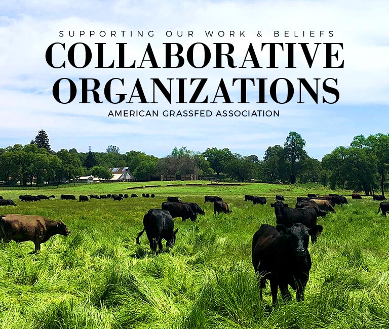 aga-collaborative-organizations