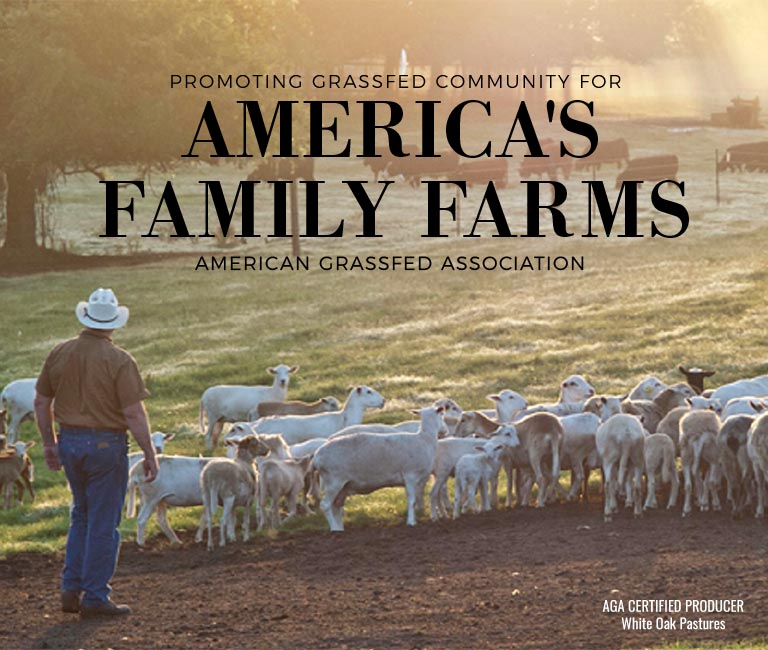 Independent Family Farmers Are Taking a Beating